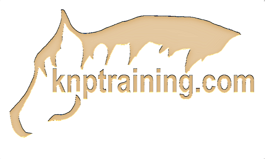 KnP Training and Lessons